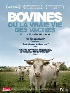 Bovines_affiche